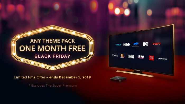 Black Friday – One Month Free on Any Theme Pack!