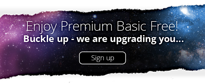 Premium Basic Package
